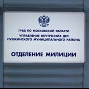 Отделения полиции Кестеньги
